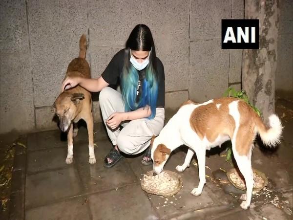 Vibha Tomar feeding dogs (Photo/ANI)