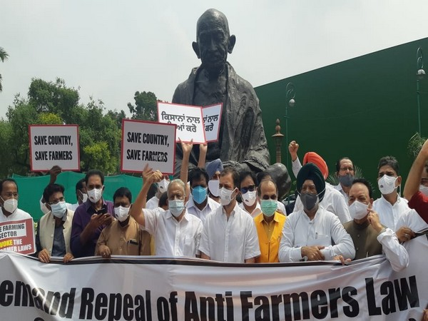 Congress MPs state protest against farm laws in front of the Gandhi statue. (Photo/ANI)