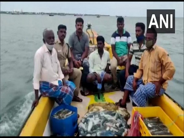 Mandapam Forest Department seized boat with 500 kg sea cucumber (Photo/ANI)