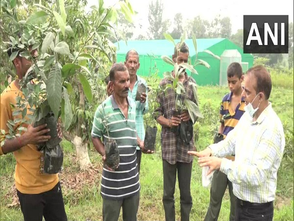 One-day Skill Development programme underway at Government Fruits Nursery in Udhampur [Photo/ANI]
