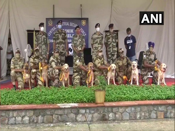 The retired CISF dogs (Photo/ANI)