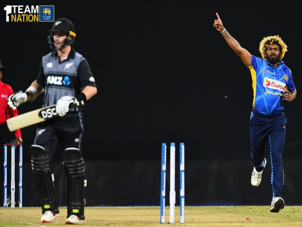 Lasith Malinga celebrating the wicket of Kiwi opener Colin Munro in the first T20I (Photo/ Sri Lanka Cricket Twitter)