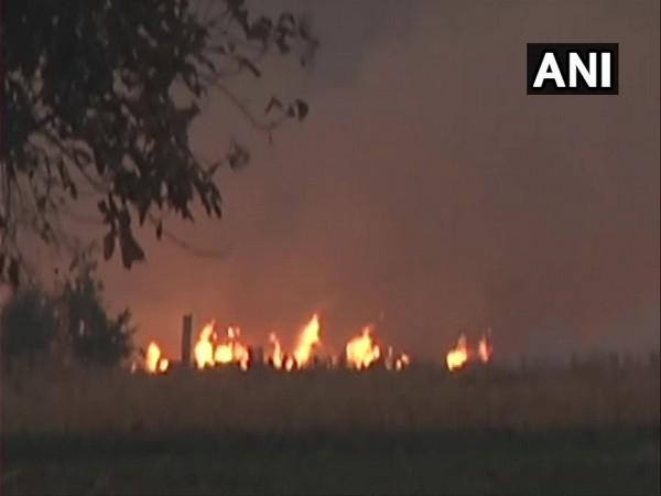 Farmers continued to burn stubble in Ludhiana on Saturday.