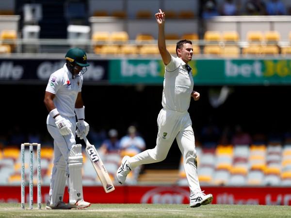 Australia pacer Josh Hazelwood celebrates after taking a wicket (Photo/ cricket.com.au Twitter)