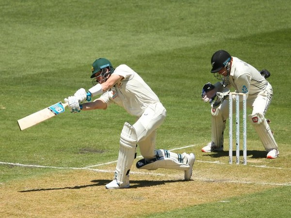 Australia's Steve Smith in action against New Zealand (Photo/ cricket.com.au Twitter)