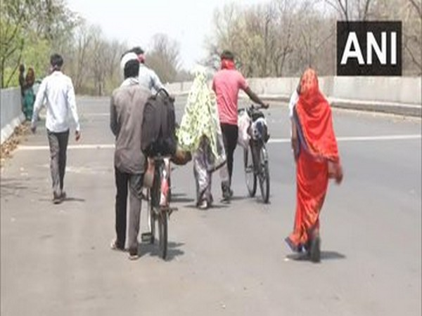 Migrant labourers in Maharashtra take long walk back home. Photo/ANI