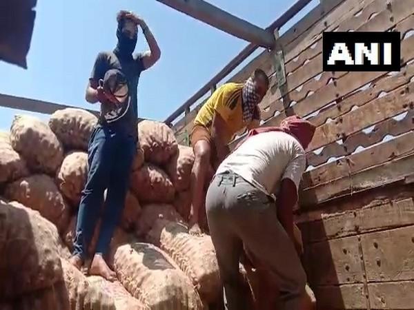Onion transported to Bangladesh from Bhusaval Division of Central Railways, Maharashtra [Photo/ANI]