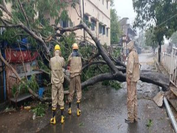 Fire Services Team clearing road blockage near R&B Office Bhadrak, Odisha [Photo/ANI]
