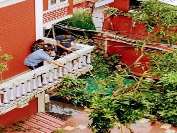 Sourav Ganguly fixing tree in his backyard (Photo/ Sourav Ganguly Twitter)