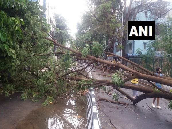 Heavy rain, strong winds lash Bengaluru.