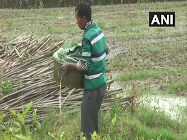 Farmers in Toubul village of Bishnupur district working in a field  [Photo/ANI]