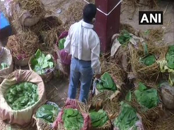 Business of betel leaves resumes in Varanasi.