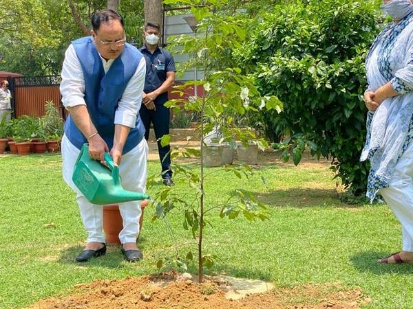 BJP president JP Nadda planted a sapling on Friday.