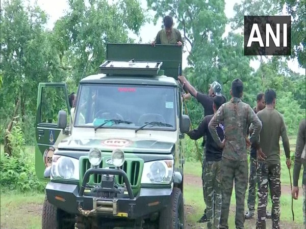 Team of RRT and STPF in forest area of Gadchiroli (Photo/ANI)