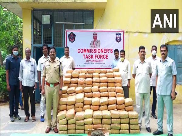 Vijayawada Task Force seized 546 kg of ganja worth Rs 27.3 lakh.