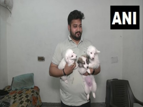 Ludhiana Municipal Corporation starts online registration of pets [Photo/ANI]