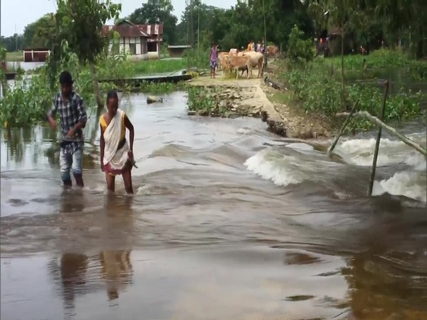 Villages in Dibrugarh were severely affected by the floods caused by rise in water levels of the Brahmaputra river. (Photo/ANI)