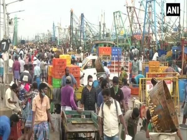 People throng Chennai's Kasimedu Fish Market on Saturday (Photo/ANI)