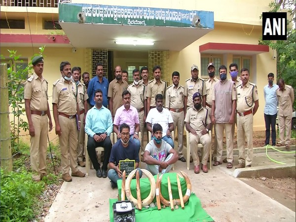 The Karnataka Forest Department arrested five indivuduals in relation to the smuggling of nine pieces of hippopotamus ivory. (Photo/ANI)