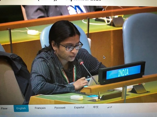 First Secretary India in UN Vidisha Maitra