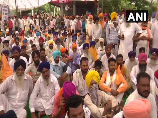 Farmers protesting in Amritsar (Photo/ANI)