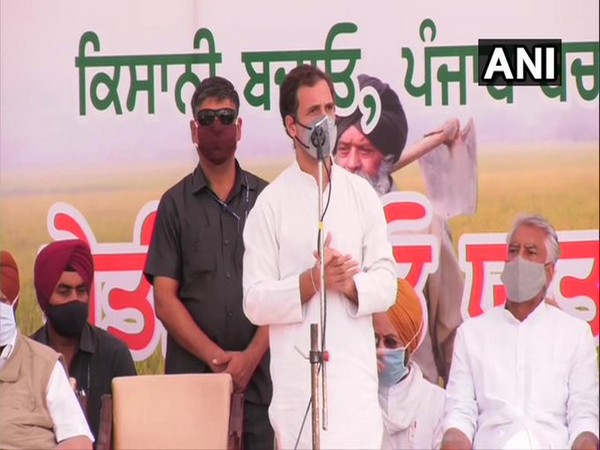 Congress leader Rahul Gandhi in Noorpur, Punjab (Photo/ANI)