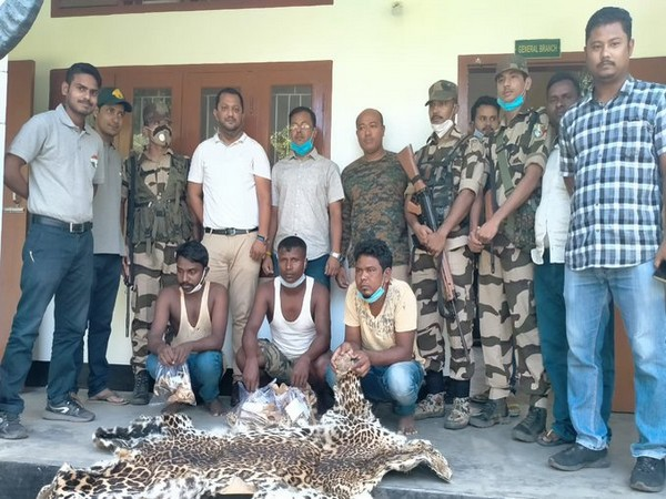 The three arrested persons with the leopard skin in Assam. (Photo/ANI)