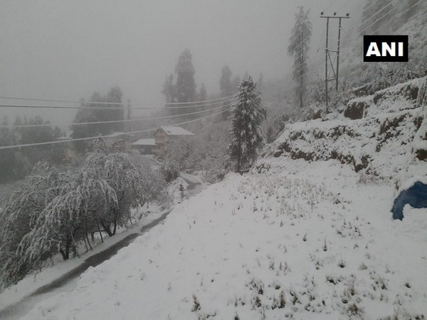 Trees and houses were seen covered in white snow, while locals remained indoors. [Photo/ANI]