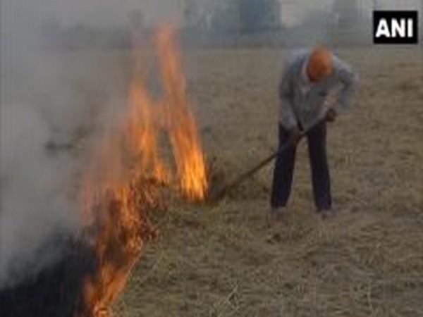 Farmers burn stubble in Amritsar's Wadala village on Tuesday. (Photo/ANI)