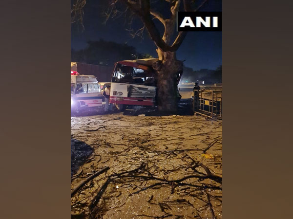 A visual from the crash site. (Photo/ANI)