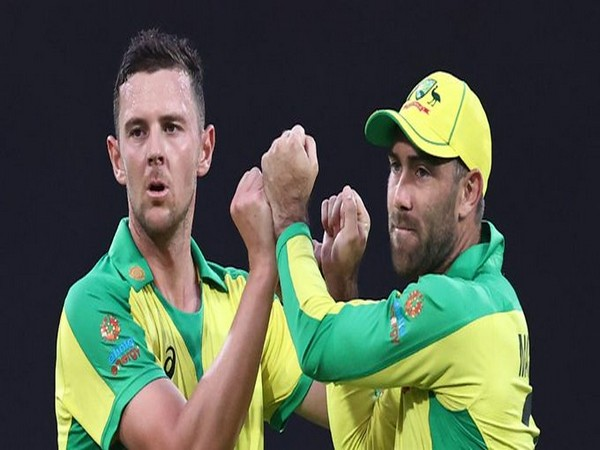 Josh Hazlewood and Glenn Maxwell in action against India in second ODI (Photo/ ICC Twitter)