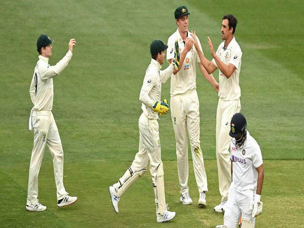 Australia lost the second Test at the MCG (Photo: ICC twitter)