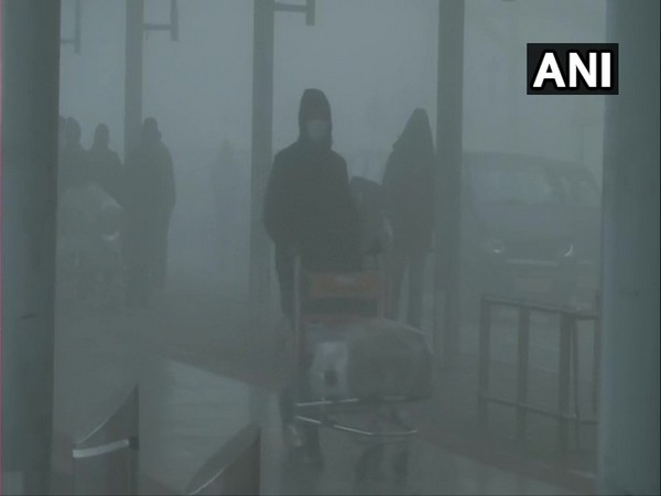 Visuals from Delhi Airport (Photo/ANI)