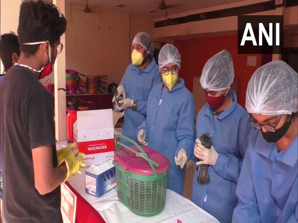 A team of volunteers helping injured birds at a camp in Surat. (Photo/ANI)