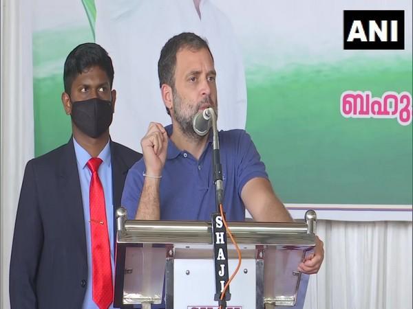 Congress leader Rahul Gandhi in Wayanad. (Photo/ANI)