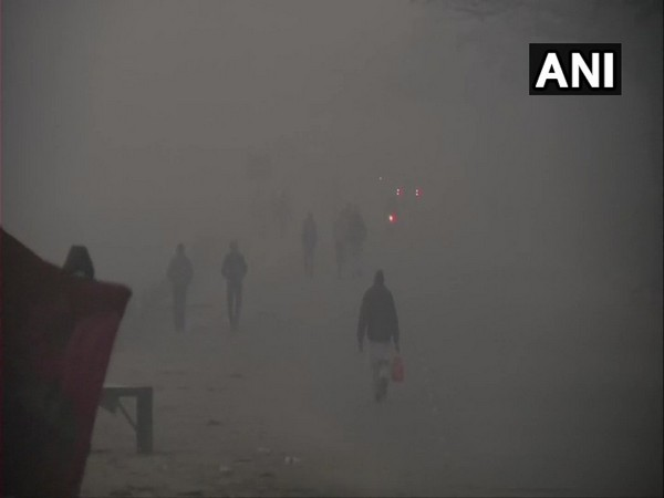 Visuals from the Singhu border. (Photo/ANI)