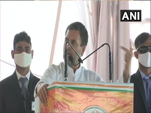 Congress leader Rahul Gandhi (photo/ANI)