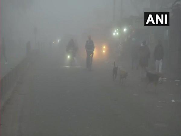 Punjab's Batala city woke up to dense fog on Wednesday (Photo/ANI)