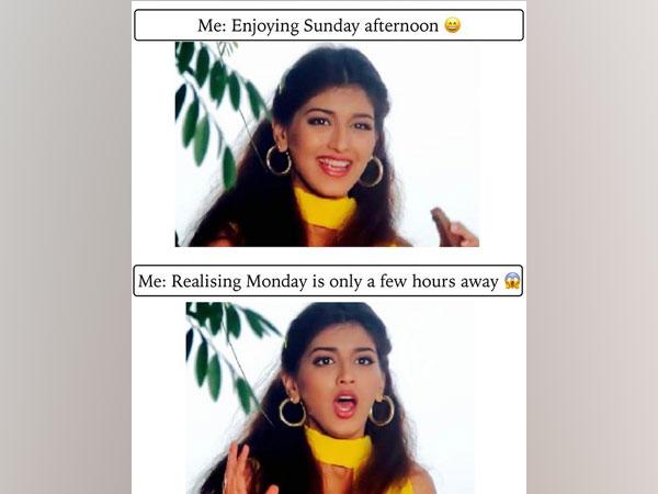 Meme shared by Sonali Bendre (Image courtesy: Twitter)