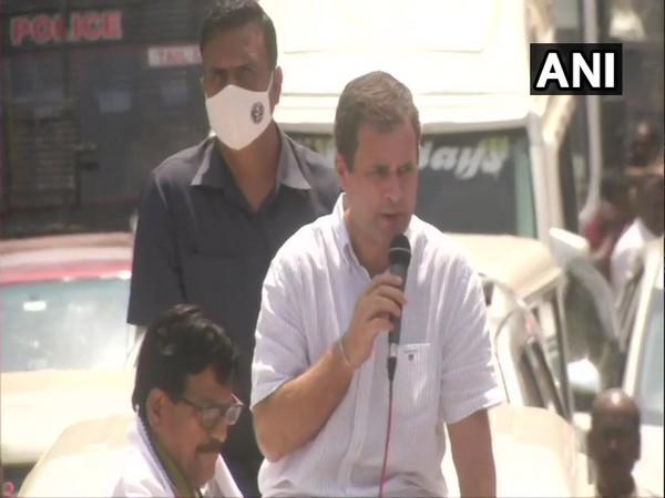 Congress leader Rahul Gandhi during a roadshow in Kanyakumari on Monday. (Photo/ANI)