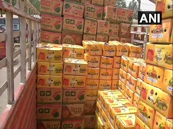 Boxes of mangoes brought to Delhi from Vizianagaram. (Photo/ANI)