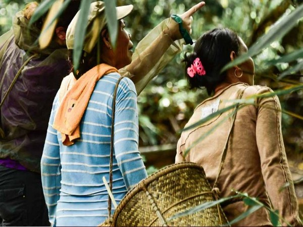 Women's management practices and knowledge played an important role in sustaining forests [Photo/UNCCD]
