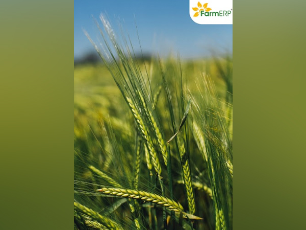 FarmERP scales up processes in the changing AgTech Landscape