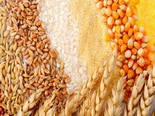 Global cereal production and trade volume will set a record.