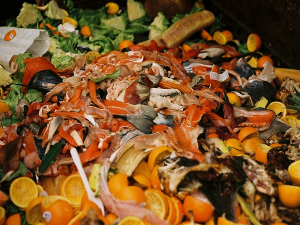 Food waste is a major issue globally, and it has also been identified as the most prominent type of hospitality waste.