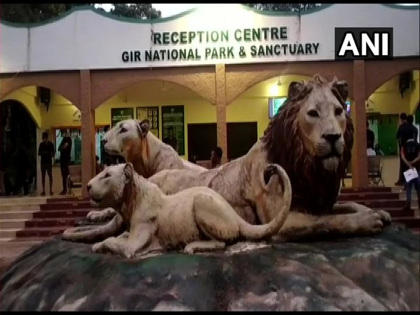 Gir National Park and Wildlife Sanctuary, Gujarat. (Photo/ANI)