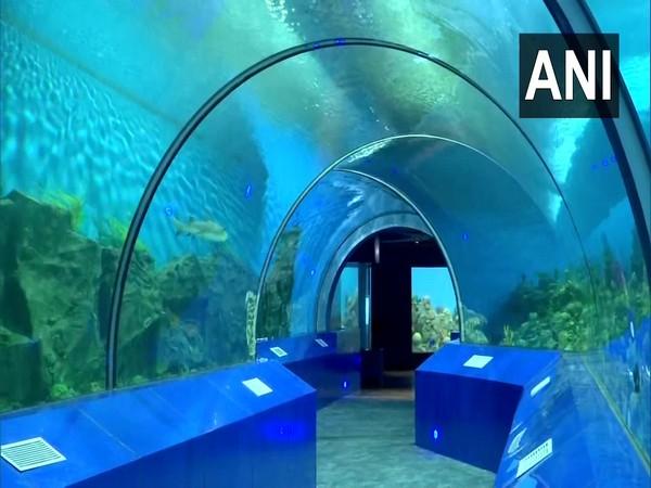 Visual of Aquatic gallary in Ahmedabad's Science city. (Photo/ANI)