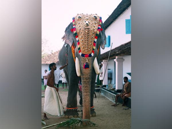 Guruvayur Padmanabhan