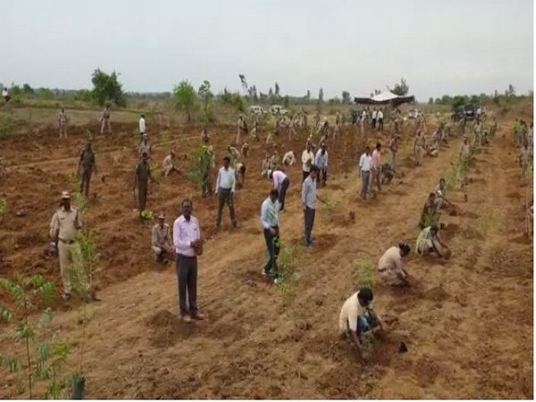 Forest officials plant saplings in Kumaram Bheem Asifabad, Telangana [Photo/ANI]