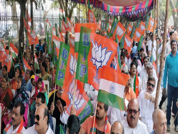 In December also Telangana BJP has organised public meetings in support of CAA. (File Image)